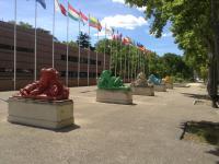 Montpellier bezoeken