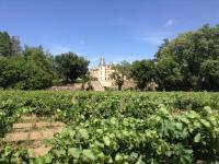 Wijngaarden Montpezat