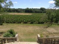 Languedoc - Rouissillon - wijngaarden