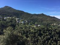 gezellige dorpjes langs Cap Corse