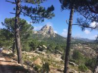 Zicht op Col de Bavella