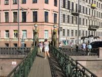 Griffioenen brug in Sint- Petersburg