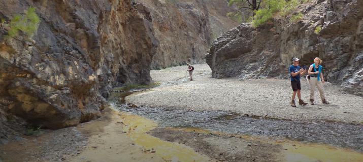 wandelen in La Palma